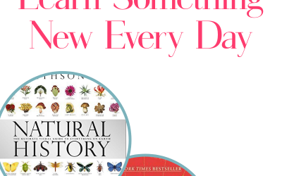 If, like me, your lifelong goal is to learn something new every day, you'll love these 20 non-fiction books. Each one is loaded with fascinating facts that will make you instantly smarter! Check them out!