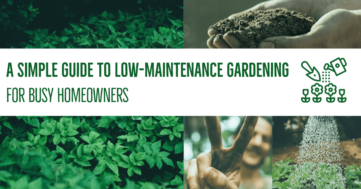 My Post 36 A Simple Guide to Low-Maintenance Gardening for Busy Homeowners