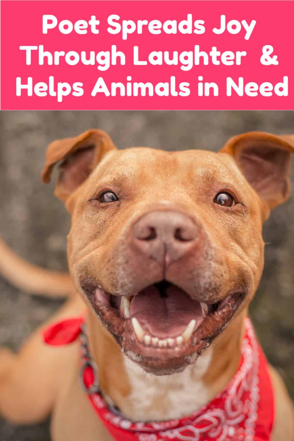 Poet and Certified Laughter Leader Jonathan Kump, who happens to live right here in my hometown, isn't just spreading joy though his fun poetry, he's also helping animals in need. Read on to learn more about how.