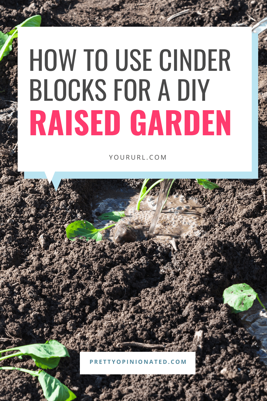 cinder blocks raised garden bed diy 05 How to Use Cinder Blocks to Make a Raised Garden