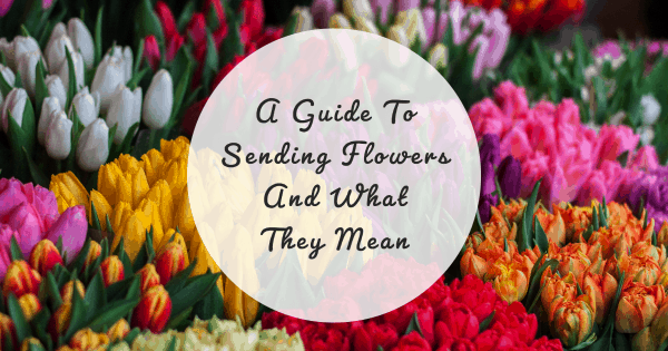 My Post 2020 09 28T122334.161 A Guide To Sending Flowers And What They Mean