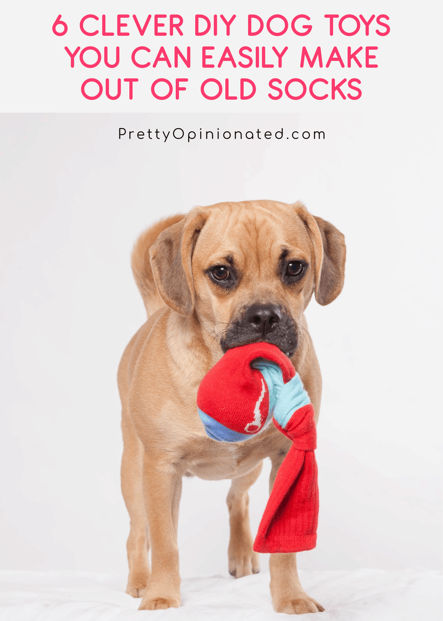 A couple pairs of old socks are basically all you need to DIY some bright, fun playthings for Fido. Check out 6 easy tutorials for homemade dog toys from socks!