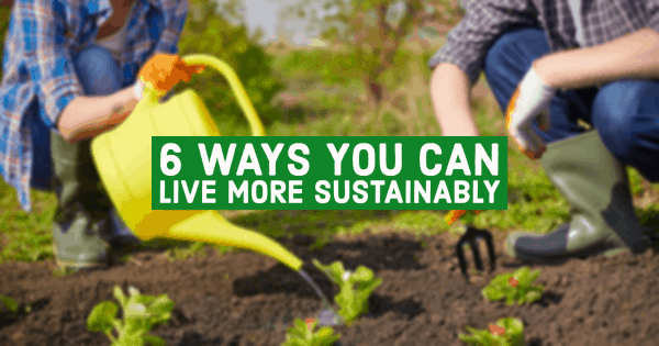 14084722 6 Ways You Can Live More Sustainably