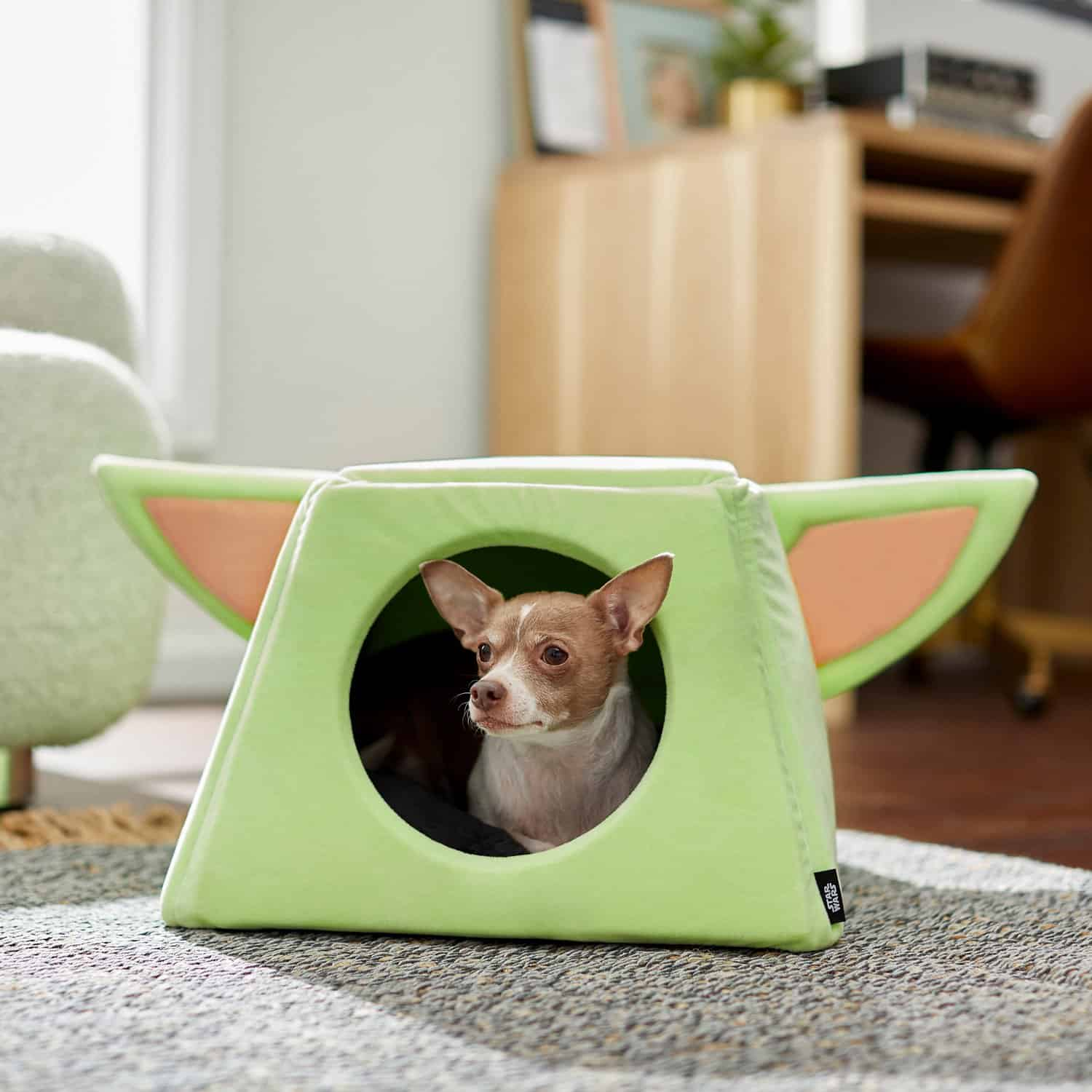 THE CHILD Covered Dog Bed for XS Toy Breeds